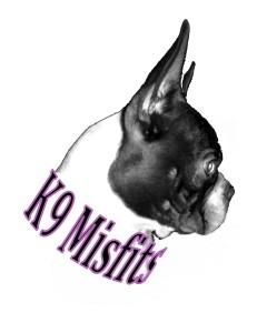 misfits logo jpeg May 2014